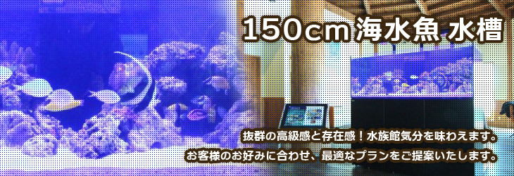 150cm以上の大型海水魚水槽をレンタルできる福岡アクアガーデン