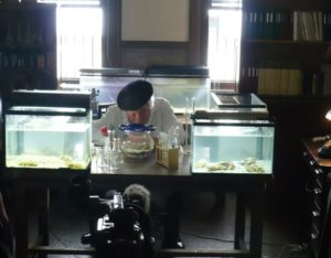 日本テレビ「未来創造堂」にて撮影協力致しました。