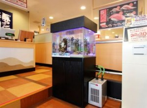 お食事前のお楽しみ!かわいい熱帯魚水槽