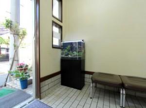 薬局の待合室にグリーンのアイテムを!