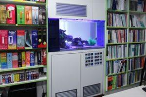 インテリアデザイン会社に両面仕様の水槽を設置