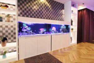 ホテルエントランスにど迫力の海水魚水槽を設置