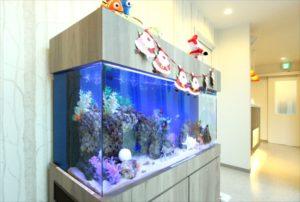 歯科クリニック様に120cm海水魚水槽を設置
