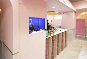 美容室様に埋込式60cm海水魚水槽を設置